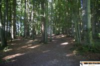 waldsportpark-ebersberg51