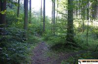 waldsportpark-ebersberg22