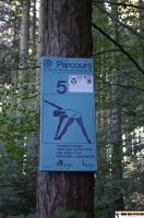 waldsportpark-ebersberg20