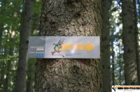 waldsportpark-ebersberg52