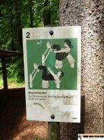 Trimm_Dich_Pfad_Ravensburg_05