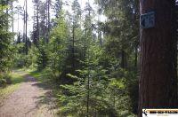 trimm-dich-pfad-sulzbachrosenberg36