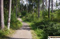 trimm-dich-pfad-sulzbachrosenberg56