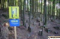 trimm-dich-pfad-bodenmais81