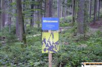 trimm-dich-pfad-bodenmais35