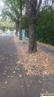 Sportpark_Berlin_X_12