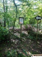 Waldsportpfad_Reilingen_03