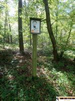 Waldsportpfad_Reilingen_17