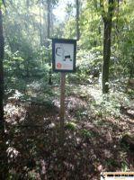 Waldsportpfad_Reilingen_04