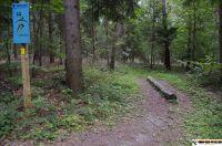trimm-dich-pfad-neustadt36