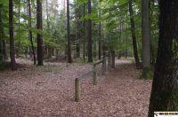 trimm-dich-pfad-neustadt43